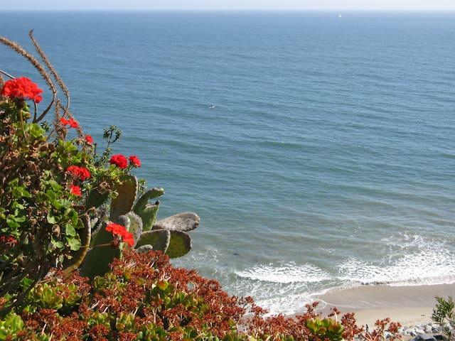 Panoramic REJUVENATE   Stunning  Peaceful   Zen