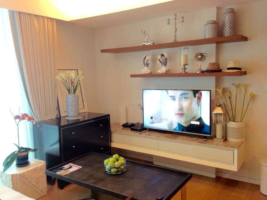 Living corner with Internet+Smart+3D+digital TV, Cable TV Apple TV and Wireless Internet