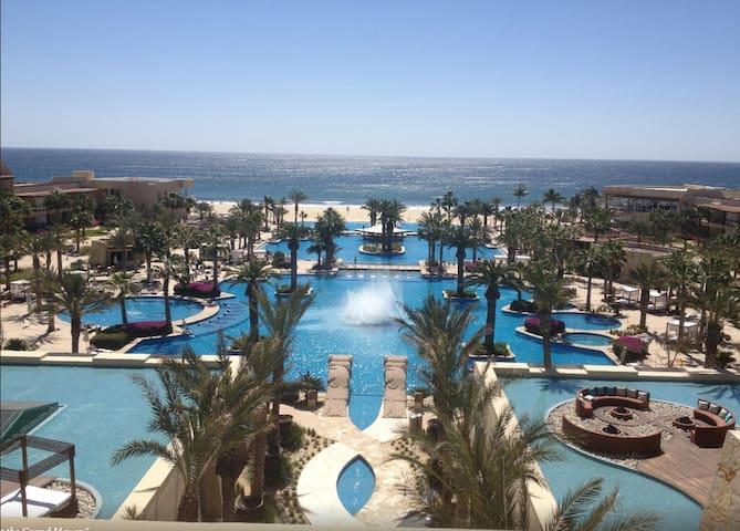 Vidanta Los Cabos Resort/Omnia Dayclub Studio
