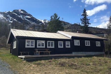 Alpelia 1: Large and cosy cottage - Hemsedal