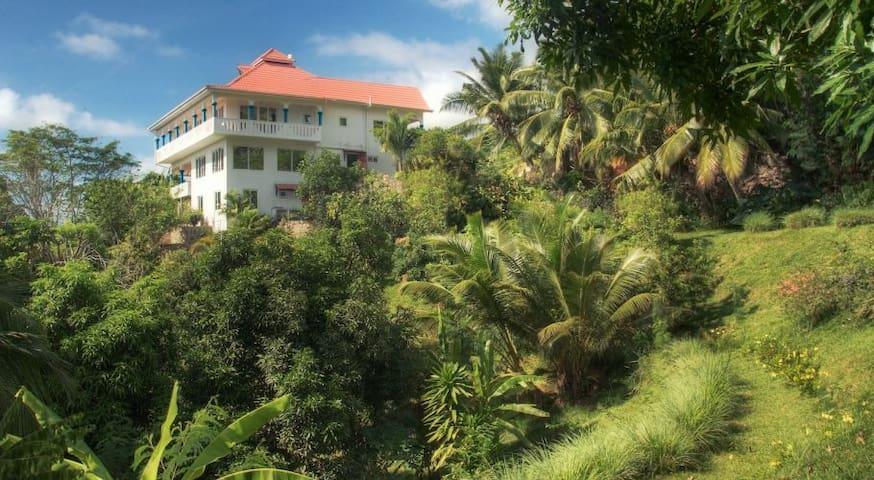 Luxury Villa Citronella for rent!