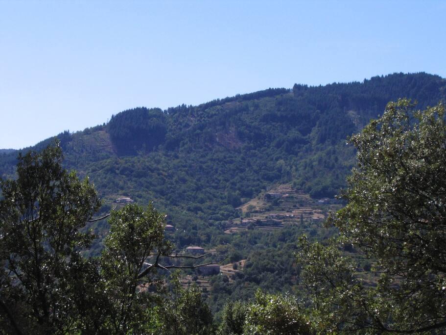 Vue depuis la terrasse (1)