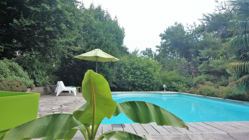 B & B with swimming pool, 2 steps from Grenoble - Saint-Martin-le-Vinoux - Bed & Breakfast