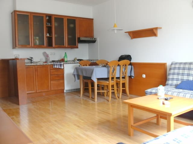 Apartment in the centre of Bled