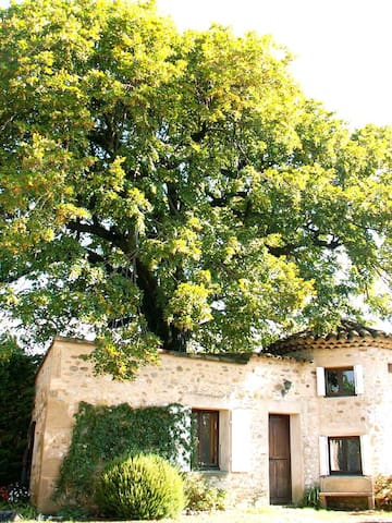 Ancien pigeonnier - Allex - Bed & Breakfast