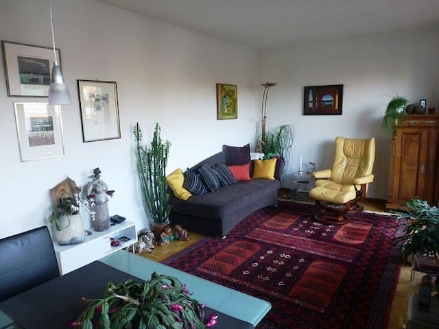 Nice appartment, near trainstation and  airport - Basel - Wohnung