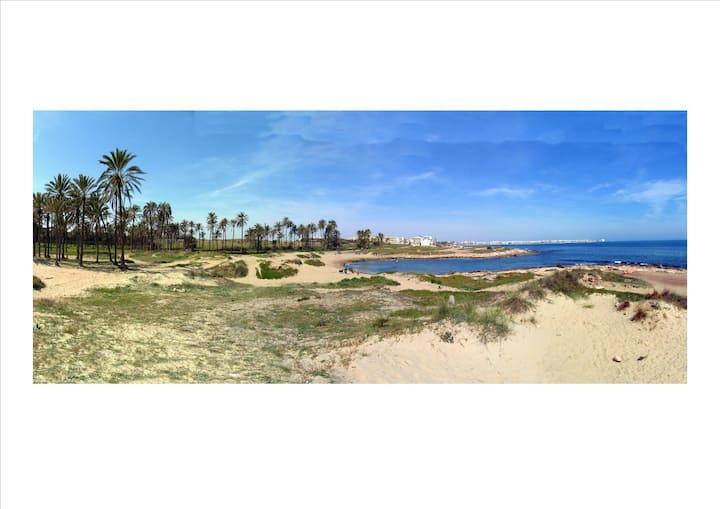 Apartamento con vistas al mar en Playa Flamenca