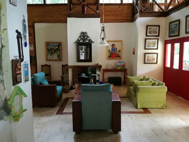 Sala Estar/Chimenea