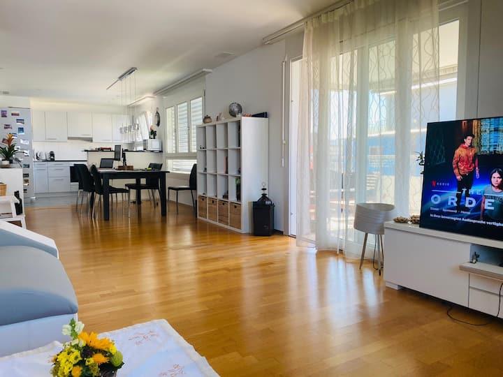 Beautiful apartment  in Zurich