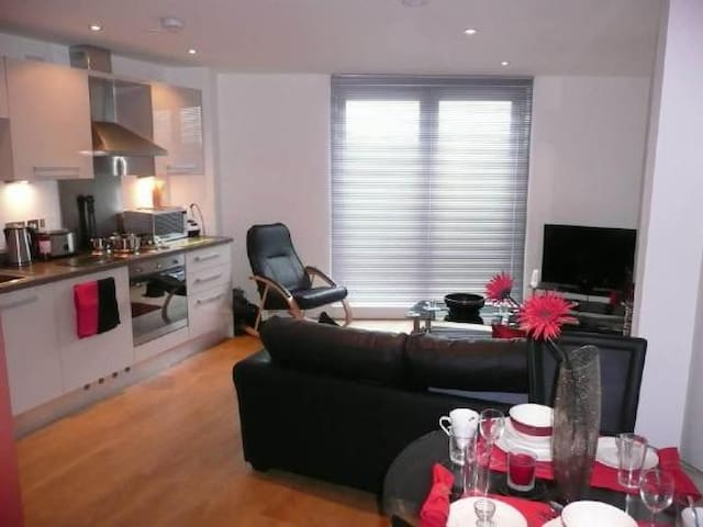 Stylish, Modern Apartment in Leeds City Centre - Leeds - Appartement