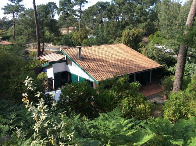 Charmante maison en bois Cap Ferret - Lège-Cap-Ferret - Ev