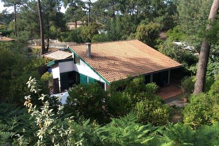 Charmante maison en bois Cap Ferret - Lège-Cap-Ferret - House