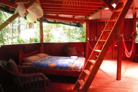 Jungle Treehouse - Cape Tribulation - Cabana en un arbre