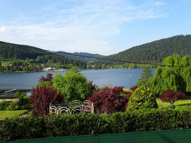 Chalet flat with amazing lake view  - Gérardmer - Appartement