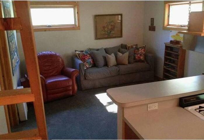 RIVERFRONT!  Cozy Apartment ~ Telluride Valley