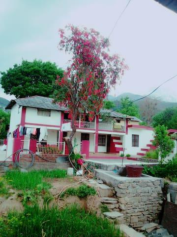 Farm house - Dharamshala - Hus