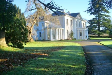 Monachty Mansion Yellow Twin Room - Aberaeron - 家庭式旅館