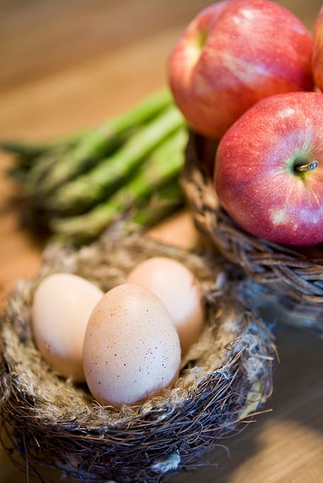 Fresh eggs every morning from the hens!