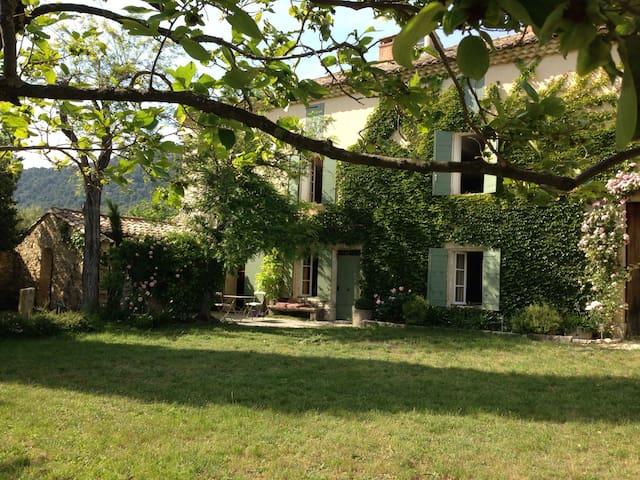 MAS PROVENÇAL Au pied du Ventoux - Saint-Hippolyte-le-Graveyron - 一軒家
