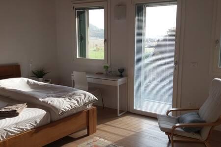 Camera singola/doppia con balcone - bagno privato