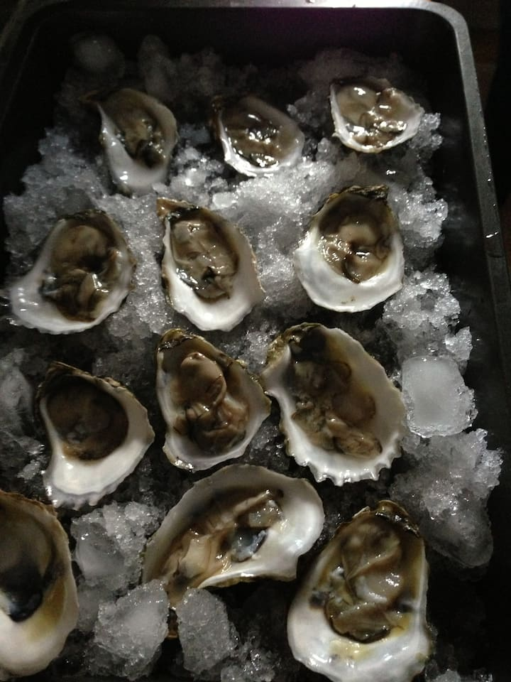 Try some famous Wellfleet oysters.