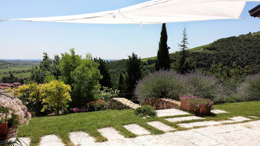 B&B Olivella - camera con vista - Mezzane di sotto - Bed & Breakfast