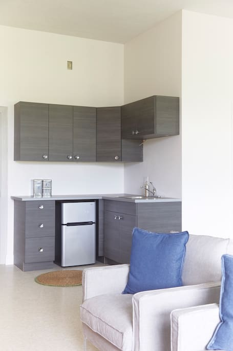Kitchenette with a full set of dishes, microwave, fridge, toaster, kettle and coffee maker