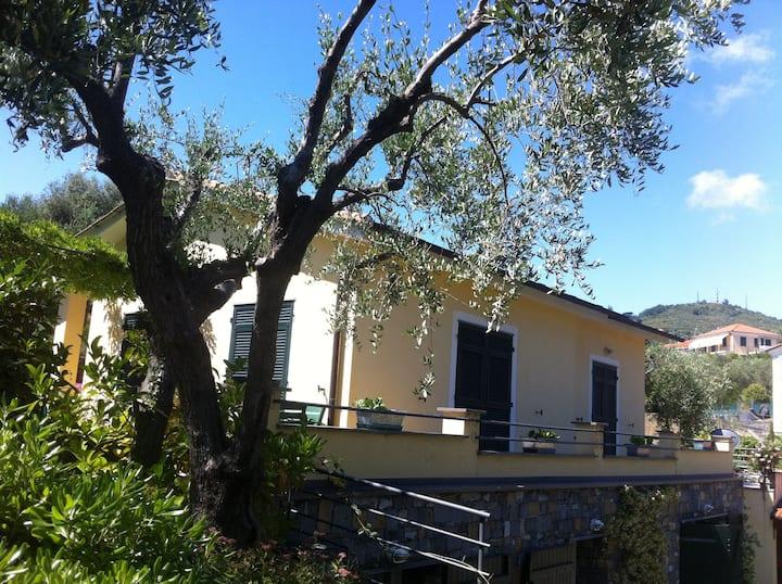 Casa Fedra