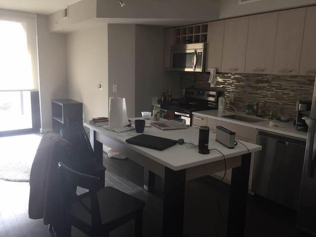 1 bedroom apartment central Rosslyn - Arlington - Apartamento
