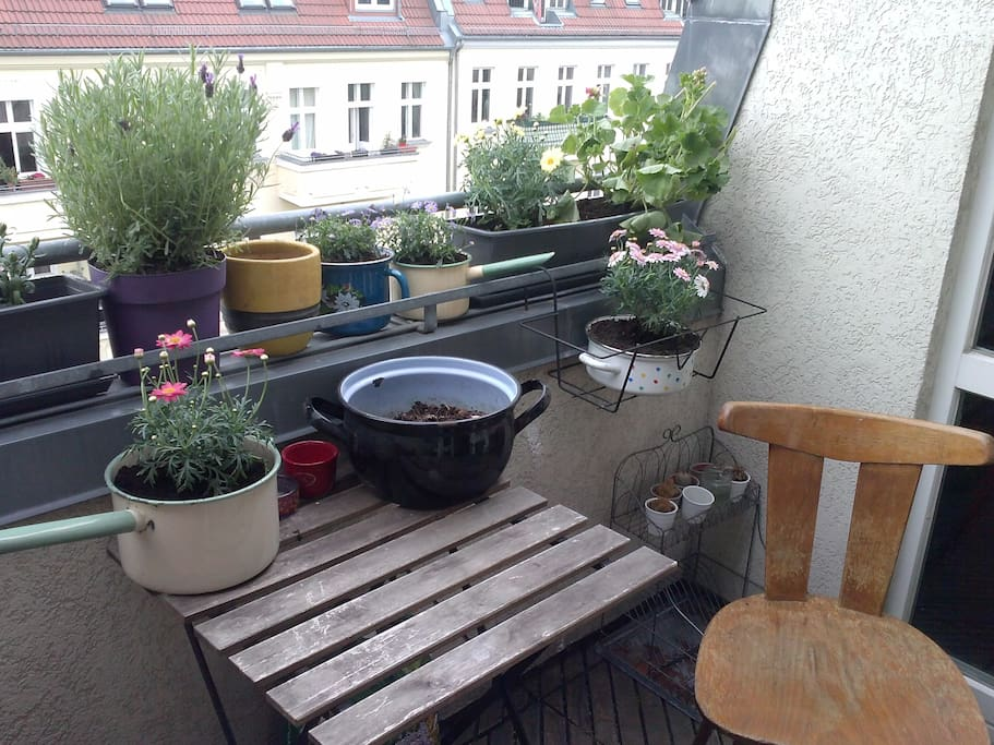 big balcony for relaxing before exploring the city.of course it's only with flowers over summer,spring