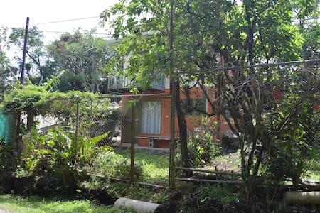 Hummingbird House - Monteverde - Monteverde - Talo