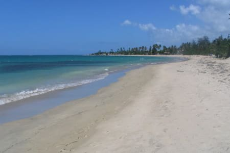Sunny and breezy with direct beach access
