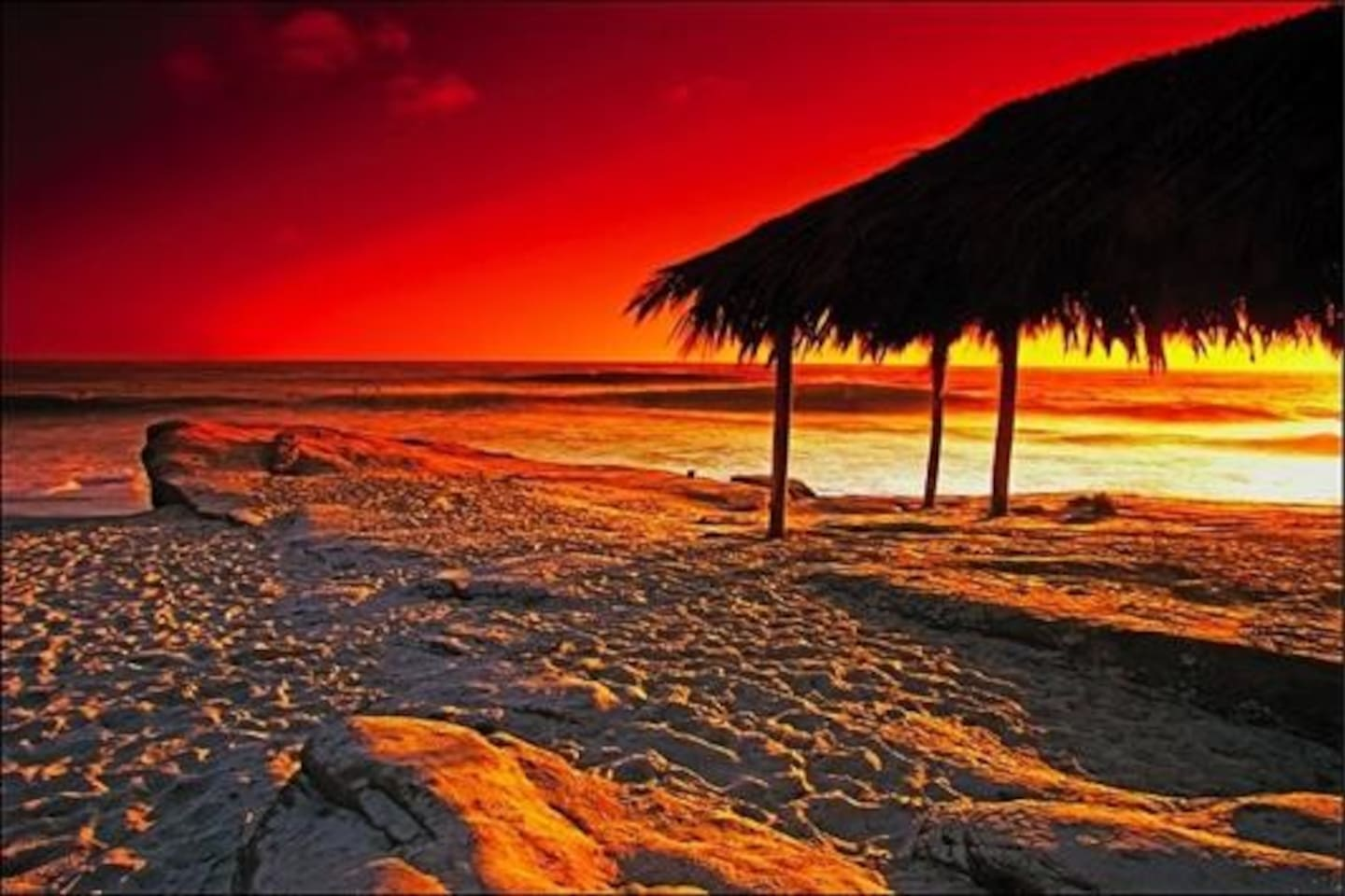 Local beach: Windansea. World-renowned. Historical Designation. One of the most beautiful beaches we know of. Its sacred here. Magic. Sunsets usually right at the end of Nautilus-(depending on season)