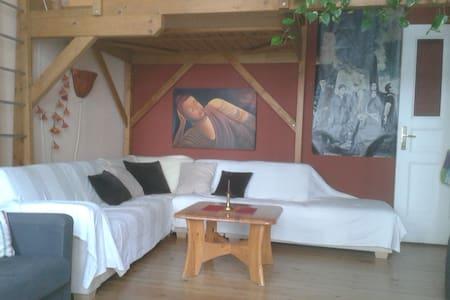 helle, gemütliche Einzimmerwohnung - Lejlighed
