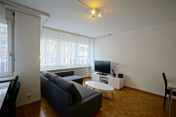 Modern 2 room flat 30 sec. to Rhine