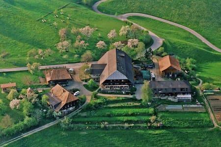 The Family Farm - Schwanden im Emmental