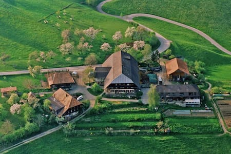 The Family Farm - Schwanden im Emmental - Bed & Breakfast