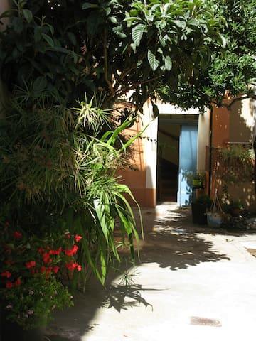 Studio Port de Sanary - Sanary-sur-Mer - Apartment