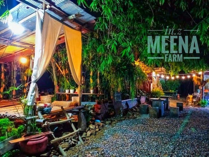in.z meena farm