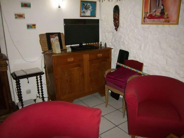 Petite maison proche centre d'Auch - Auch - Appartement