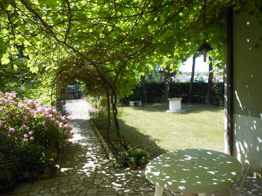 giardino con vialetto coperto da vigneto e zona pranzo-cena all'aperto