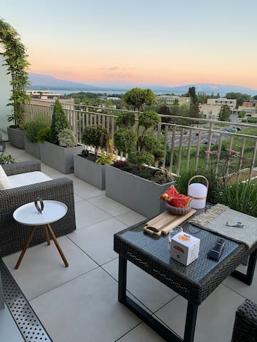 Stunning View and Elegant Living Space in Nyon