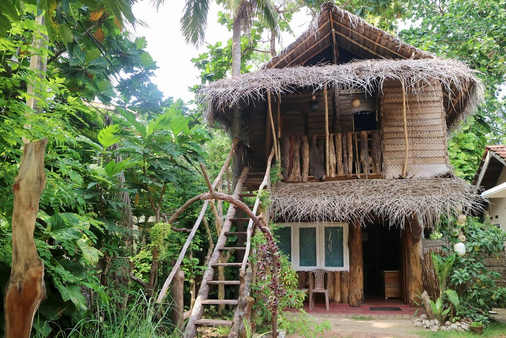 Welcome to your family nature house