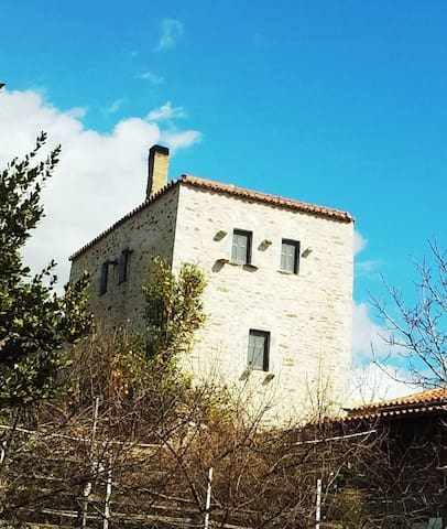 MANI-DEREZEAS  HOME TOWER- THALAMES FOREVER