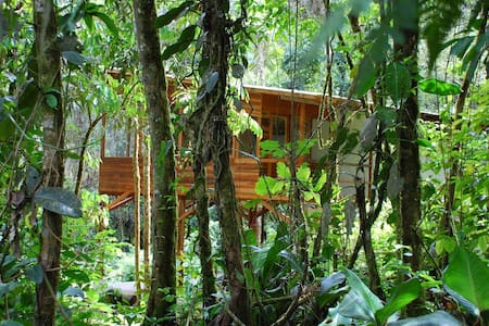 House in the amazon/ Rafting tour - Tena