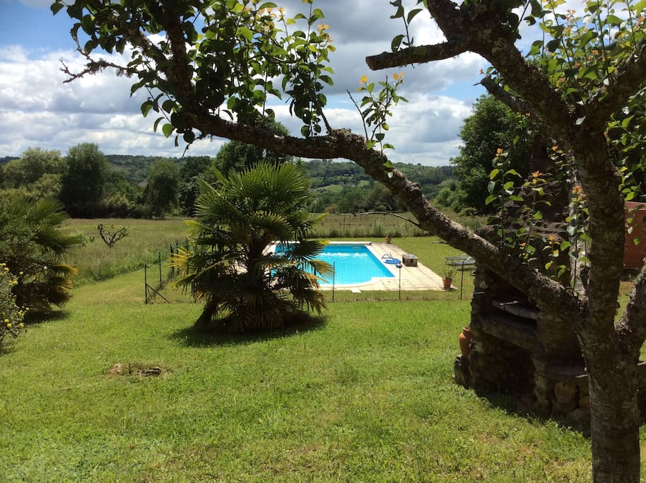View of the pool from the orchard