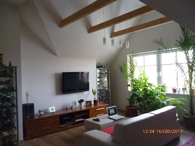 New penthouse appartment close to the Prague City - Praag - Appartement