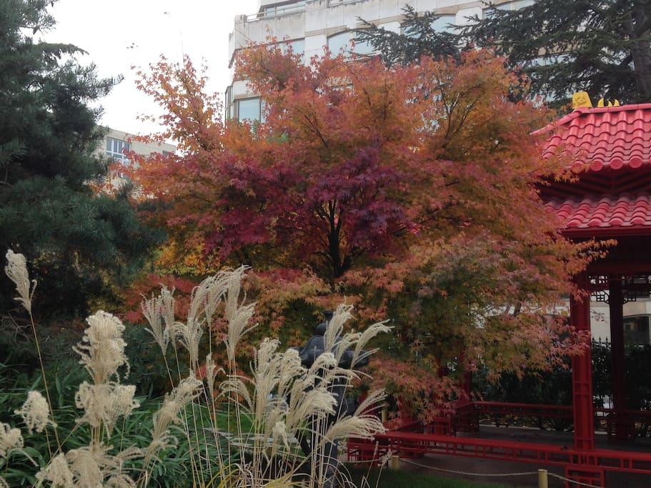 Jardin en ville parking 5 39 39 paris appartements louer for Jardin a louer ile de france