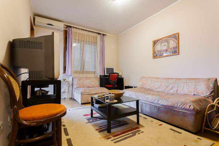 cosy apartment in nice sorrounding - Podgorica - Apartment