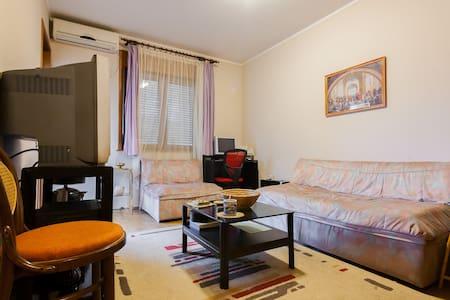 cosy apartment in nice sorrounding - Podgorica - Apartment